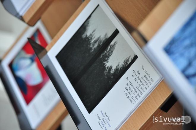 Diana Rosy Ricárdez López' literature-based photographic project [Photo by Daniel Malpica]